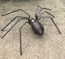 Spring Spider Back